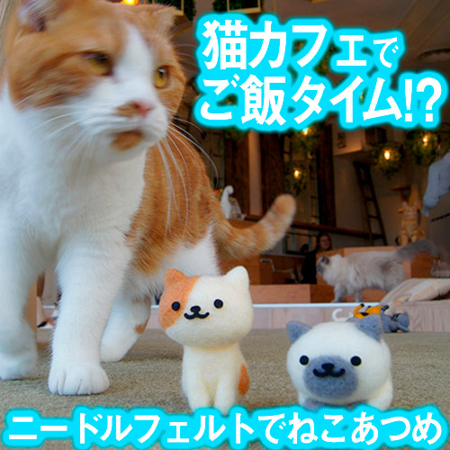 猫の日記念「ニードルフェルトでねこあつめ」in 猫カフェMOCHA原宿店